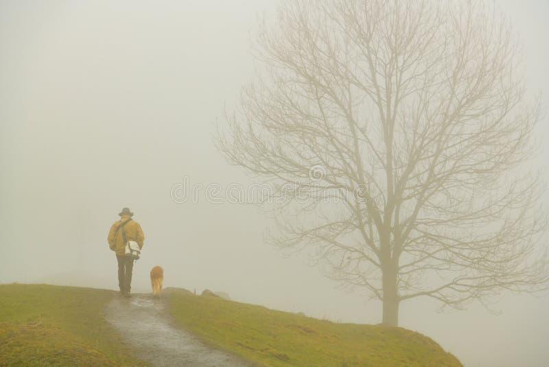 Άτομο που περπατά με το σκυλί του στο ίχνος σε Seebodenalp, επάνω από τη μικρή πόλη Kussnacht AM Rigi στην Ελβετία στοκ φωτογραφίες