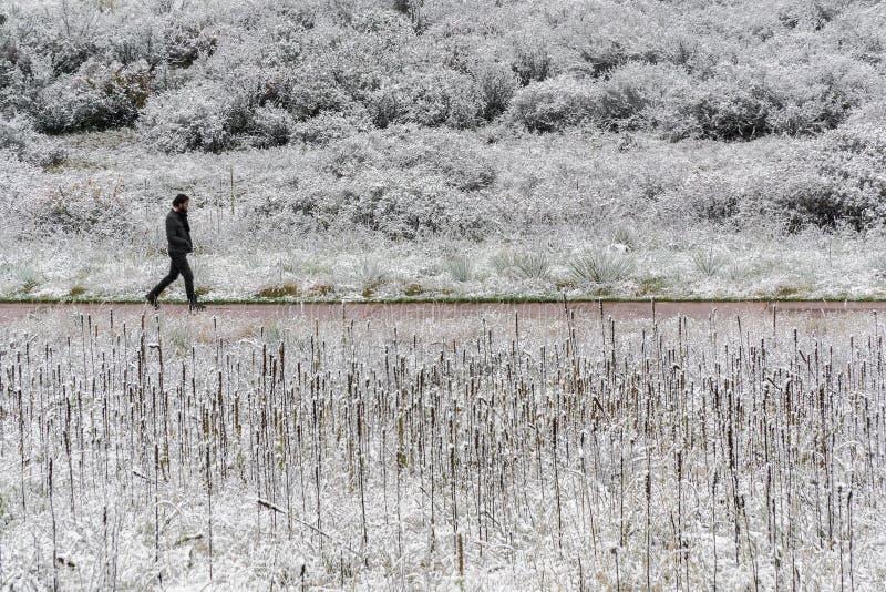 Άτομο που περπατά στην πορεία χιονιού στοκ φωτογραφία με δικαίωμα ελεύθερης χρήσης