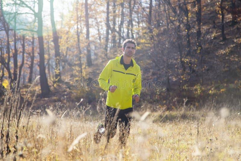 Άτομο που τρέχει στο πάρκο φθινοπώρου στοκ φωτογραφία με δικαίωμα ελεύθερης χρήσης