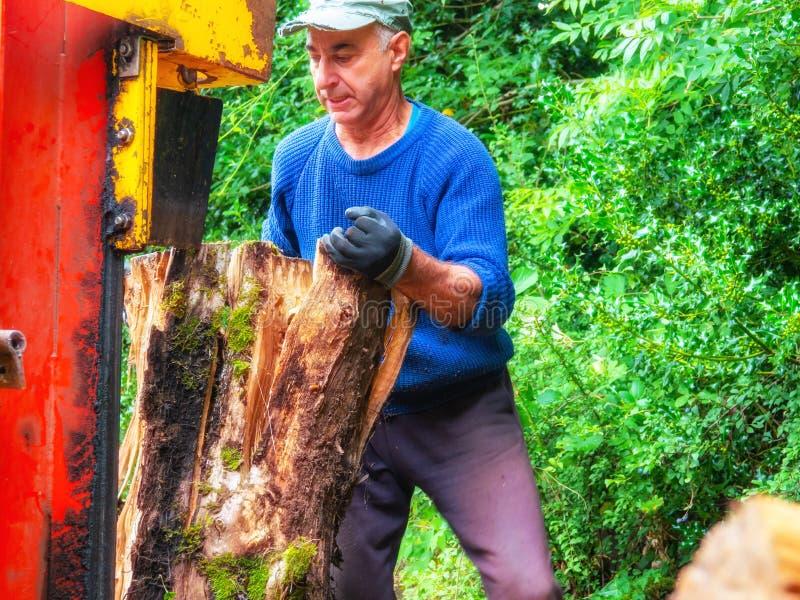 Άτομο που χρησιμοποιεί το θραύστη κούτσουρων κοντά σε ένα ξύλινο υπόστεγο στοκ εικόνα με δικαίωμα ελεύθερης χρήσης