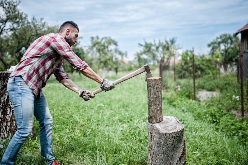 Άτομο που χωρίζει το ξύλινο και τέμνον καυσόξυλο με το τσεκούρι στοκ φωτογραφία