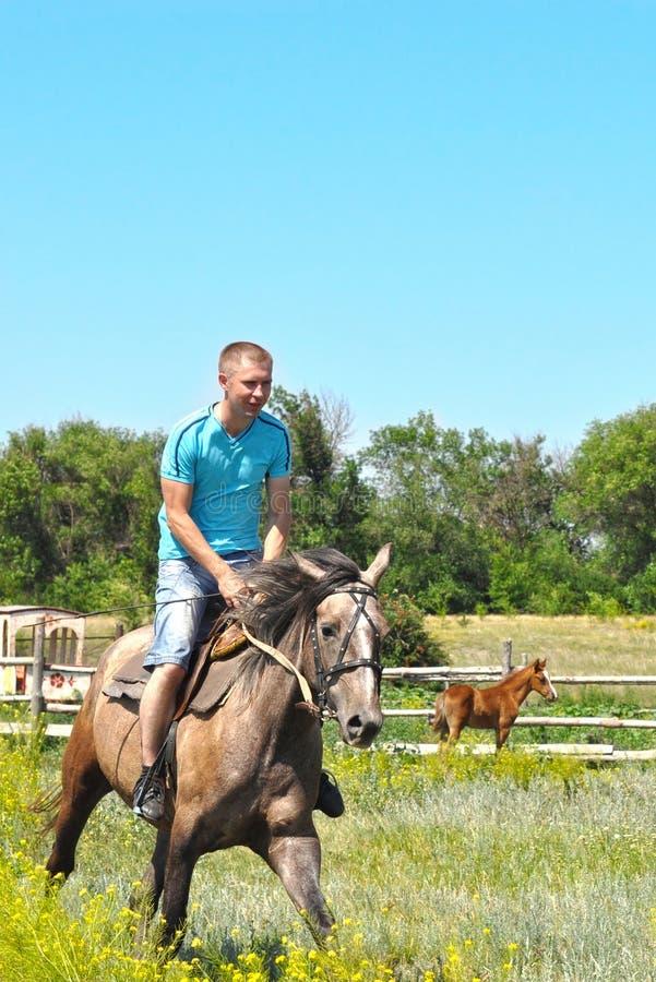 Άτομο σε ένα άλογο στοκ εικόνες