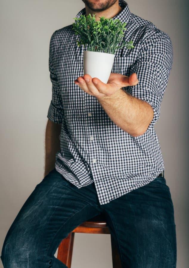Άτομο σε ένα πουκάμισο καρό που κρατά εγκαταστάσεις σε ένα δοχείο, η έννοια της φροντίδας της φύσης, ένας αγρότης, ανάπτυξη, συγκ στοκ εικόνες