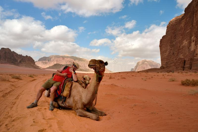 άτομο στην καμήλα στην Ιορδανία στοκ εικόνες