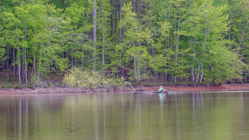 Άτομο στη βάρκα πληρωμάτων στη λίμνη που κωπηλατεί με τα δέντρα στο υπόβαθρο στοκ εικόνα