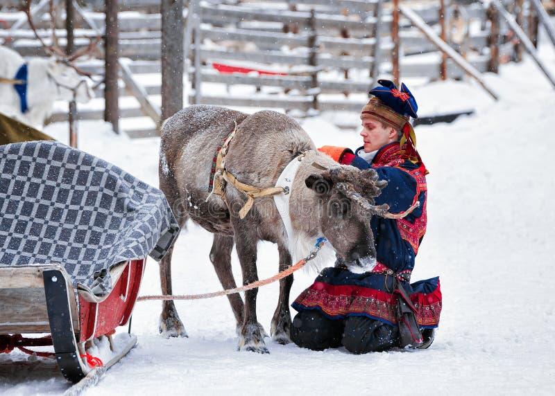 Άτομο στο κοστούμι Saami tradidional με τον τάρανδο στοκ φωτογραφίες