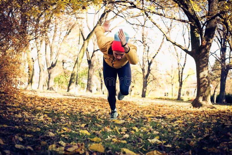 Άτομο στο πάρκο, τρέξιμο δασική εποχή μονοπατιών πτώσης φθινοπώρου στοκ εικόνα