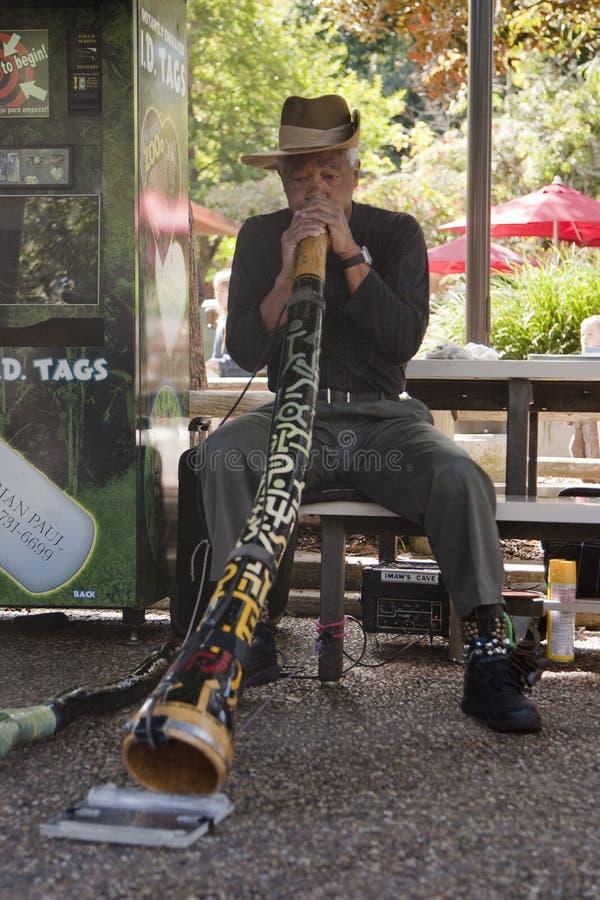 άτομο didgeridoo στοκ εικόνα με δικαίωμα ελεύθερης χρήσης