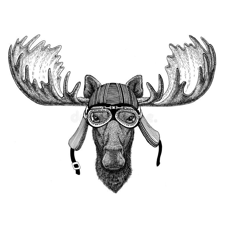 Άλκες, άγριο ζώο αλκών που φορούν την απεικόνιση κρανών λεσχών μυγών αεροπόρων μοτοσικλετών ποδηλατών για τη δερματοστιξία, έμβλη διανυσματική απεικόνιση