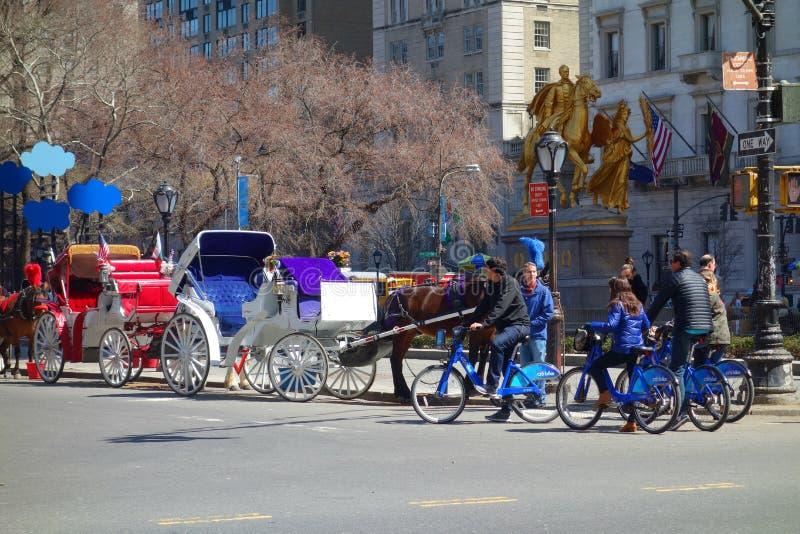 Άλογα και ποδήλατα στοκ εικόνες
