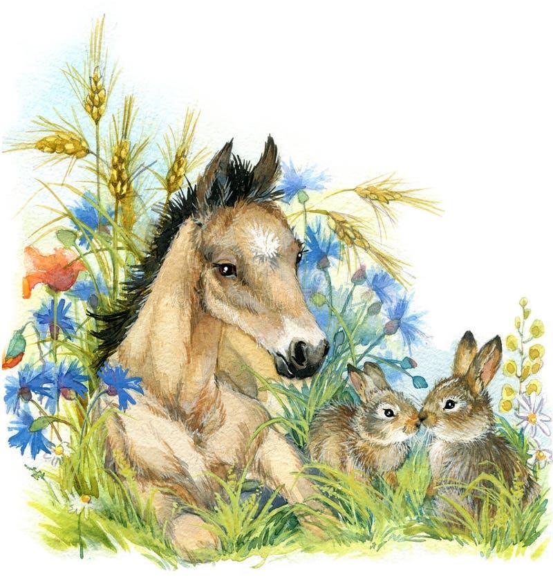 Άλογο και λαγουδάκι Ανασκόπηση με το λουλούδι watercolor απεικόνισης διανυσματική απεικόνιση
