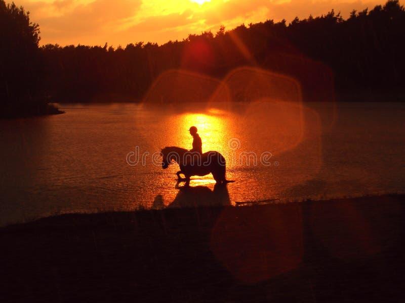 Άλογο και ηλιοβασίλεμα στοκ φωτογραφία με δικαίωμα ελεύθερης χρήσης