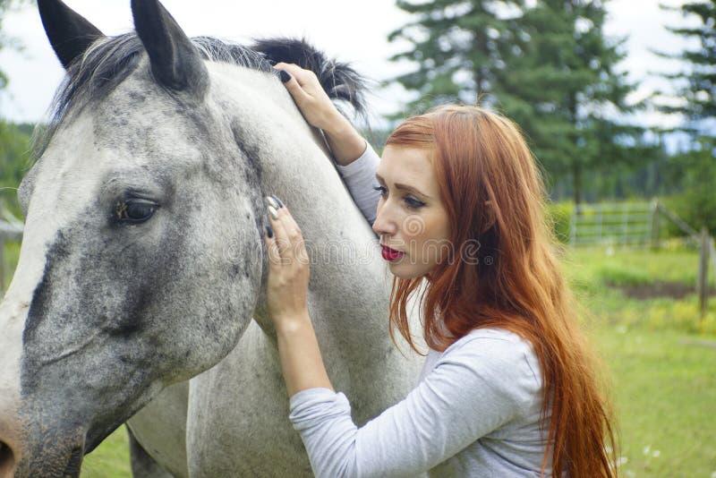 Άλογο & κορίτσι στοκ εικόνα