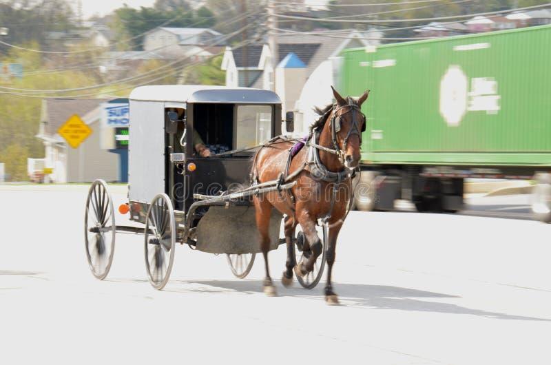 Download Άλογο & με λάθη στοκ εικόνες. εικόνα από άλογο, οδός - 62707630