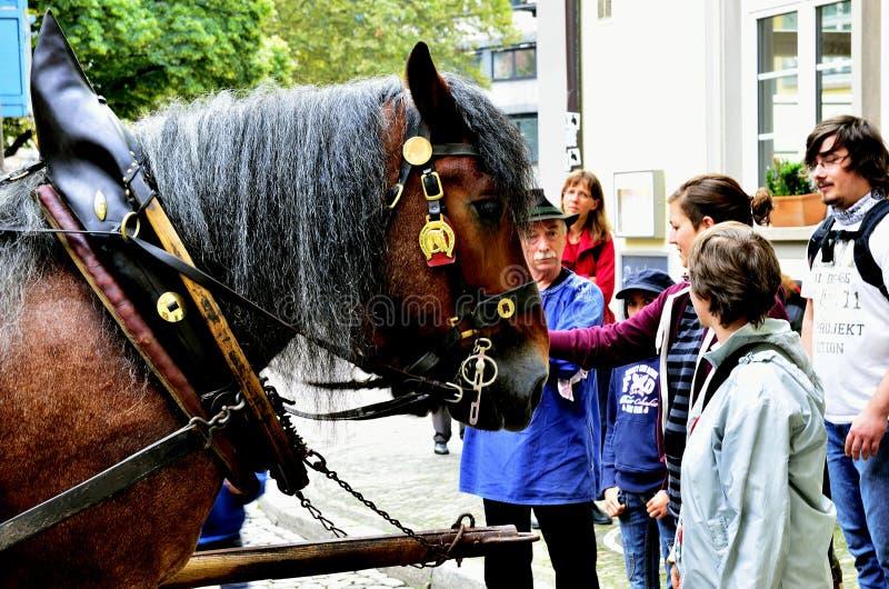 Άλογο που σύρονται και πεζοί στοκ φωτογραφίες με δικαίωμα ελεύθερης χρήσης