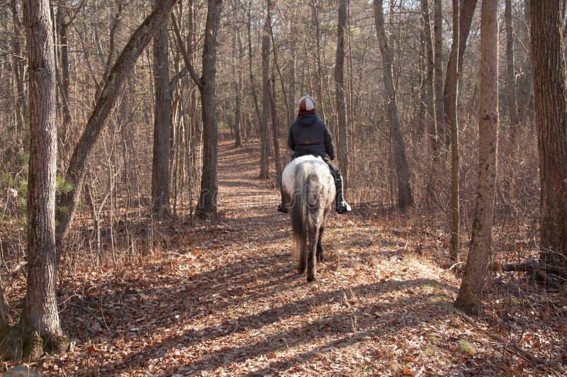 Άλογο στο σπίτι τίτλων αναβατών στοκ εικόνα