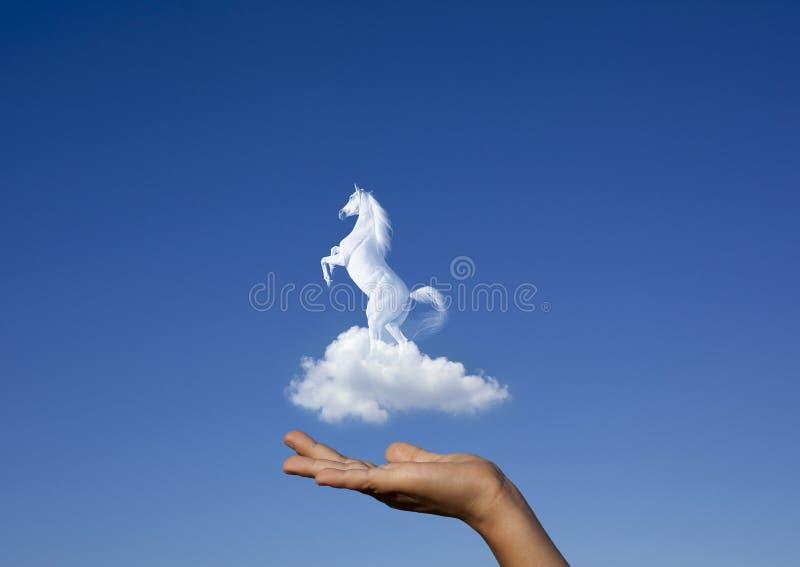 Άλογο στο σύννεφο στοκ εικόνες