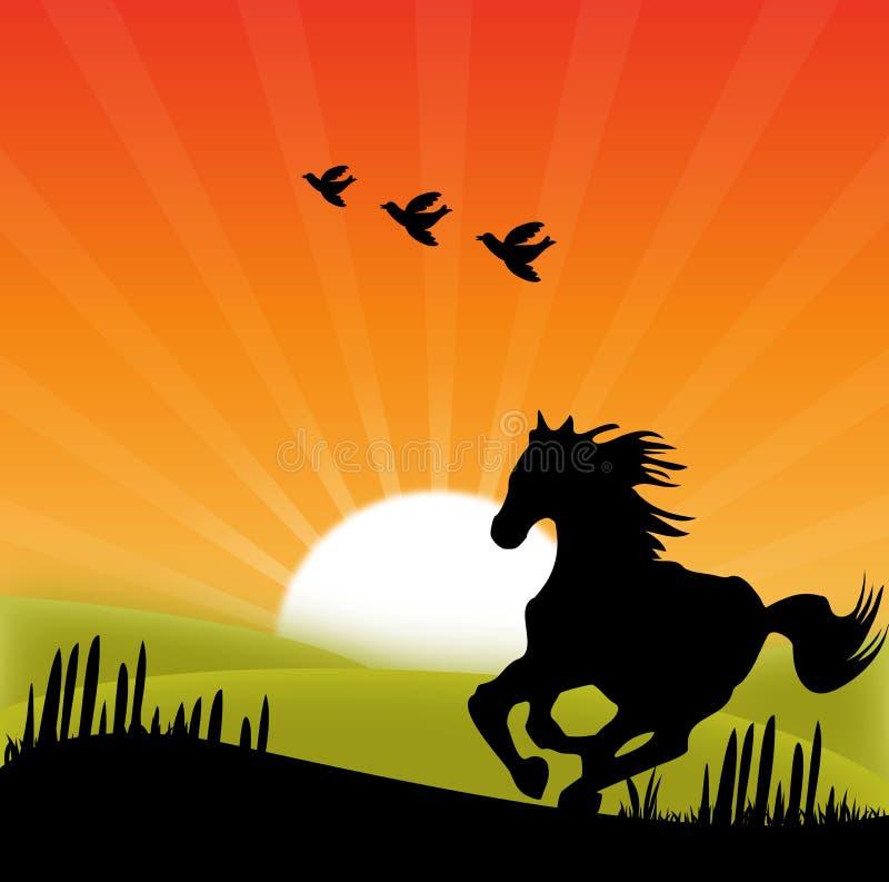 Άλογο τρεξίματος στο ηλιοβασίλεμα διανυσματική απεικόνιση