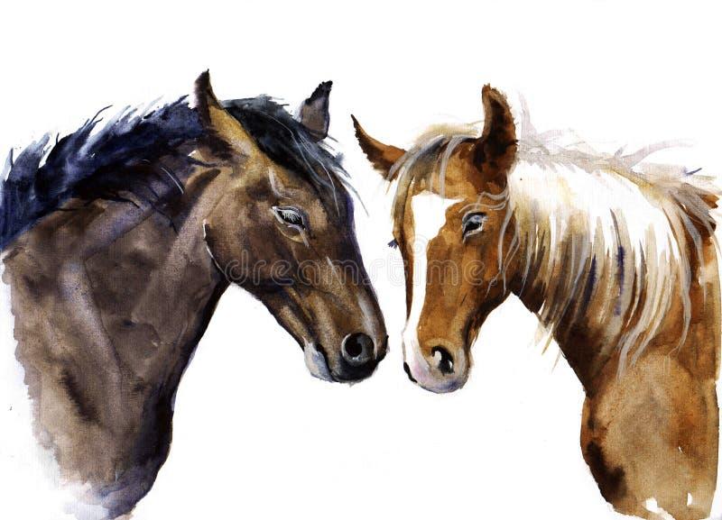 Άλογο Watercolor απεικόνιση ζώων κατοικίδιων ζώων στοκ εικόνα