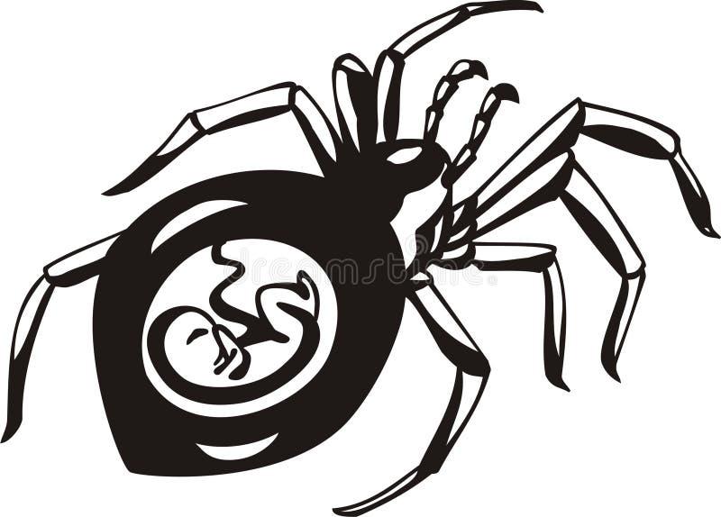 έγκυος αράχνη Στοκ Εικόνα