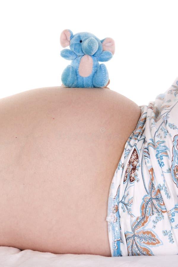 Έγκυος κοιλιά με elefant στοκ εικόνα με δικαίωμα ελεύθερης χρήσης