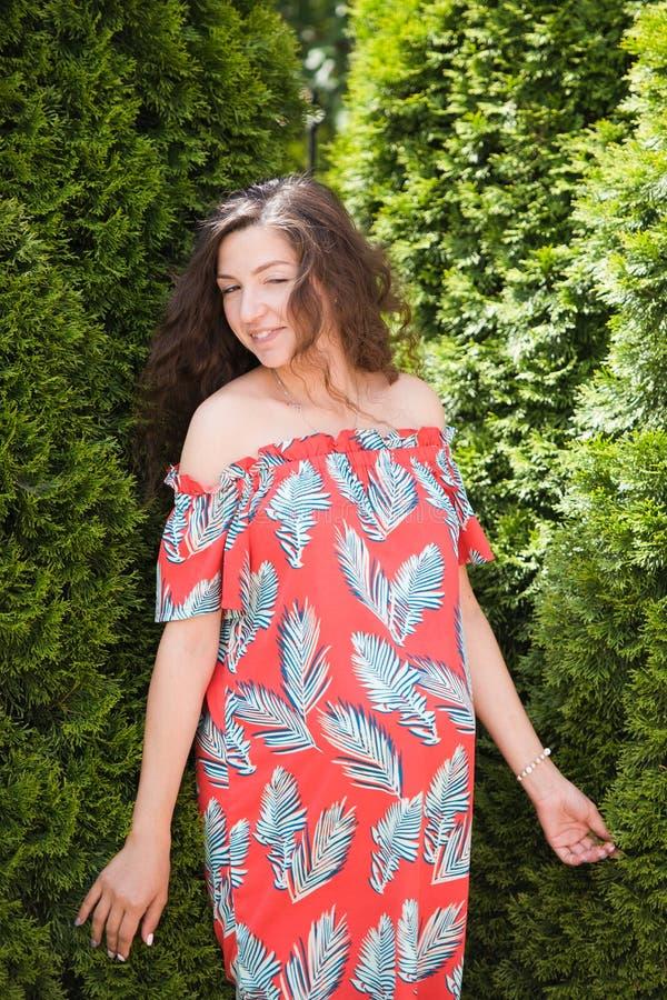 Έγκυο κορίτσι κοντά στην όμορφη πρασινάδα Η όμορφη έγκυος γυναίκα στο φόρεμα και σχετικά με την κοιλιά στέκεται κοντά στο thuja Μ στοκ εικόνα