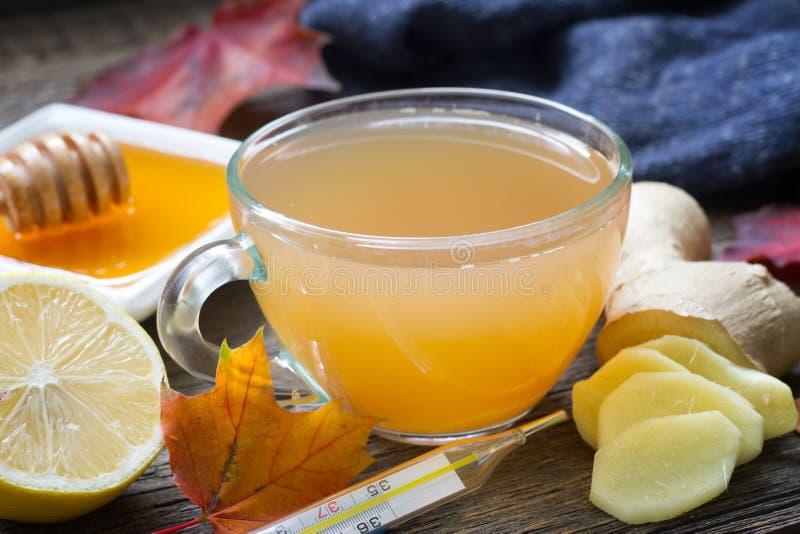 Έγχυση τσαγιού πιπεροριζών με την ασυλία λεμονιών και μελιού στην κρύα έννοια γρίπης στοκ εικόνες