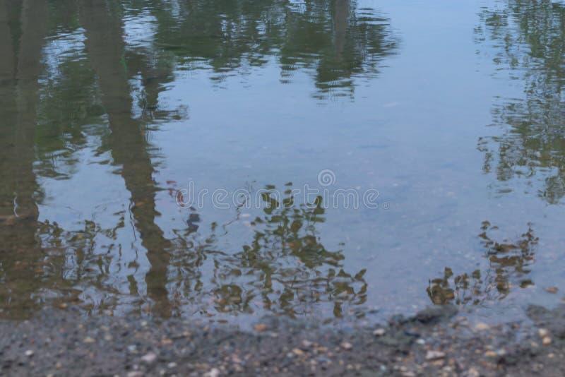 Έδαφος με ένα αμμοχάλικο εκείνες οι κεκλιμένες ράμπες κάτω στη σαφή λίμνη στοκ φωτογραφίες