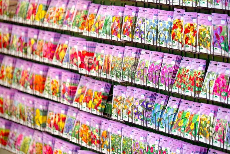 Έκθεση σπόρου σε Bloemenmarkt Άμστερνταμ στοκ φωτογραφίες με δικαίωμα ελεύθερης χρήσης