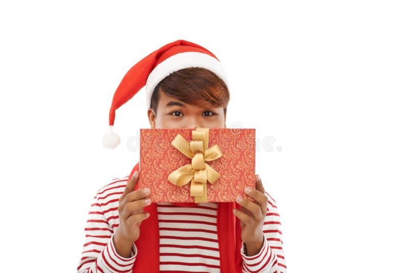 Έκπληξη για τα Χριστούγεννα στοκ εικόνα