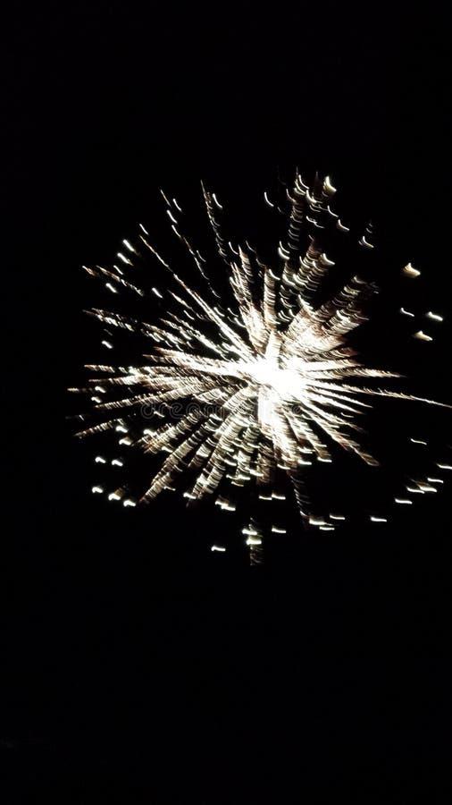 Έκρηξη της φωτιάς του Dandelion στοκ φωτογραφίες