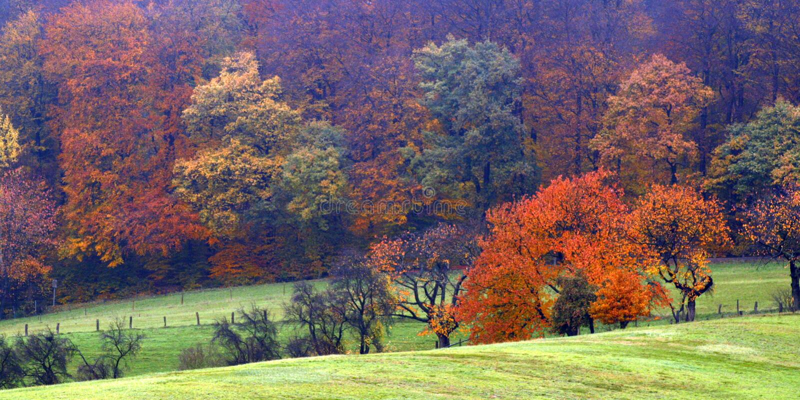 έκρηξη χρώματος φθινοπώρο&upsilo στοκ εικόνες με δικαίωμα ελεύθερης χρήσης