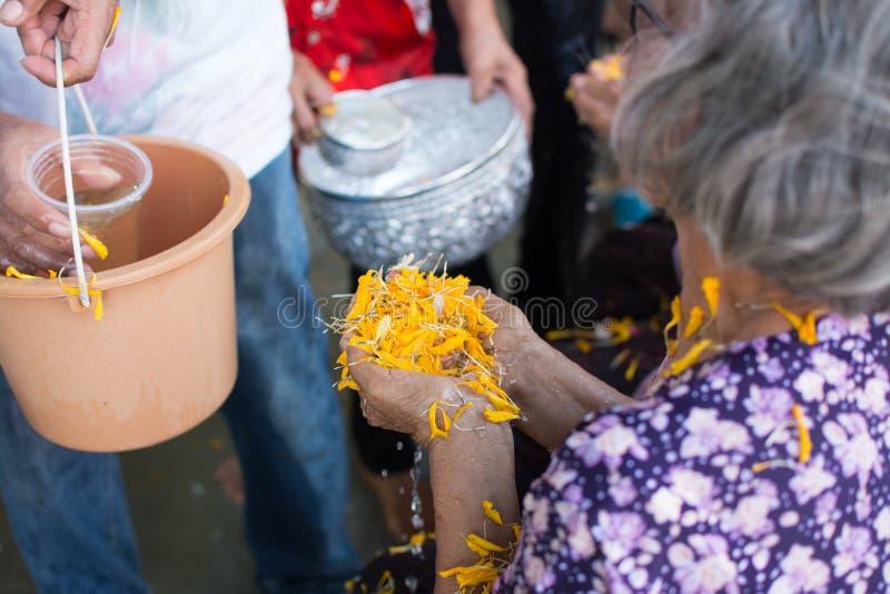 Έκχυση νερού στο ηλικιωμένο άνθρωπο στην παράδοση φεστιβάλ Songkran Ταϊλάνδης στοκ εικόνες με δικαίωμα ελεύθερης χρήσης