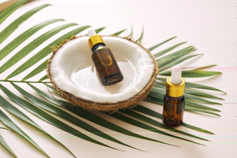 Έλαιο καρύδων στο μπουκάλι με τα ανοικτά καρύδια και πολτός στο βάζο, πράσινο υπόβαθρο φύλλων φοινικών Φυσικά καλλυντικά προϊόντα στοκ εικόνα