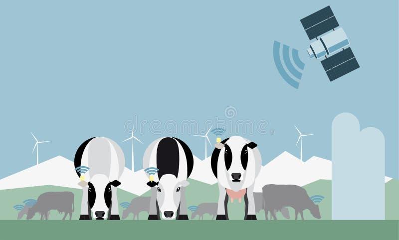 Έλεγχος ενός γαλακτοκομικού αγροκτήματος μέσω του δορυφόρου διανυσματική απεικόνιση