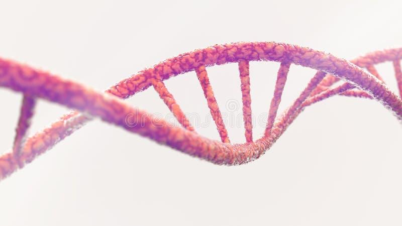 Έλικας DNA στην άσπρη τρισδιάστατη απόδοση υποβάθρου στοκ εικόνα