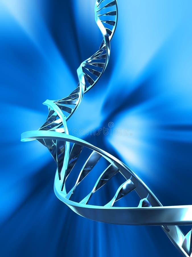 έλικας DNA διανυσματική απεικόνιση