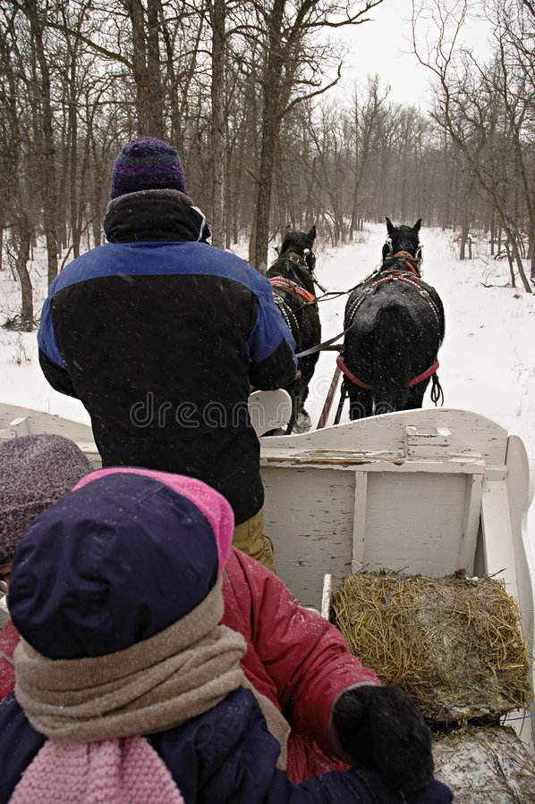 Download έλκηθρο γύρου στοκ εικόνα. εικόνα από δάση, χειμώνας, έλκηθρο - 61729