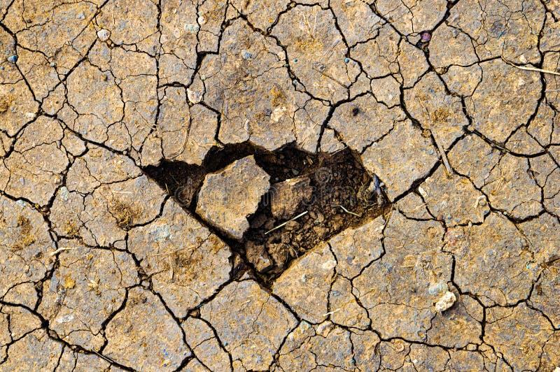 Έλλειψη νερού στη γη στοκ εικόνα