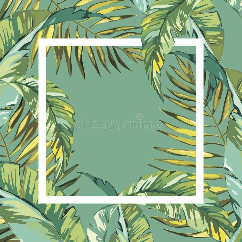 Έμβλημα, αφίσα με τα φύλλα φοινικών, φύλλο ζουγκλών Όμορφο floral τροπικό θερινό υπόβαθρο απεικόνιση αποθεμάτων