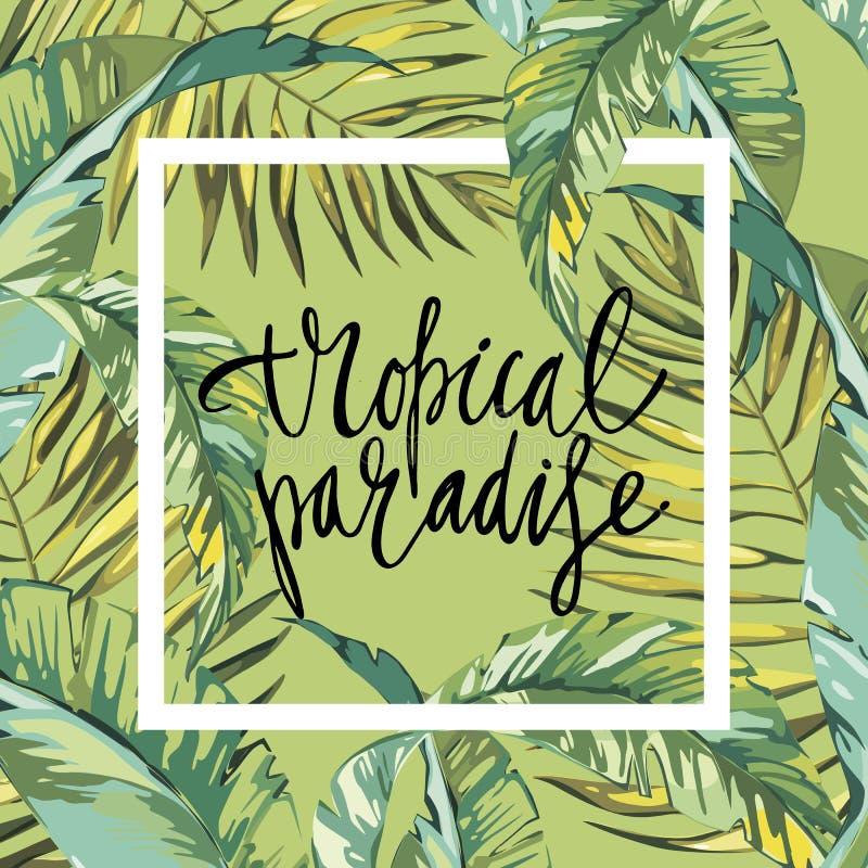 Έμβλημα, αφίσα με τα φύλλα φοινικών, φύλλο ζουγκλών Όμορφο floral τροπικό θερινό υπόβαθρο Σύνθεση εγγραφής - απεικόνιση αποθεμάτων