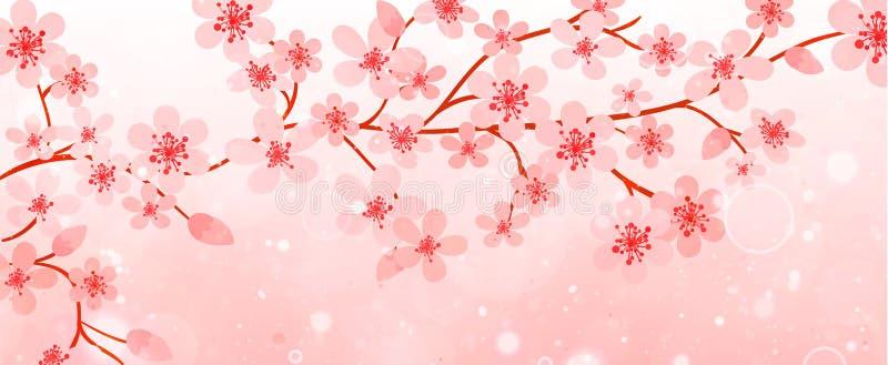 Έμβλημα των κλάδων με τα άνθη κερασιών διανυσματική απεικόνιση