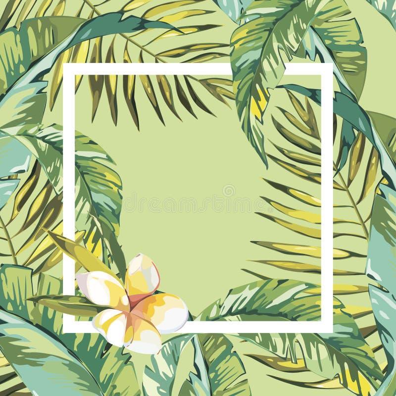 Έμβλημα, αφίσα με τα φύλλα φοινικών, φύλλο ζουγκλών Όμορφο διανυσματικό floral τροπικό θερινό υπόβαθρο 10 eps ελεύθερη απεικόνιση δικαιώματος