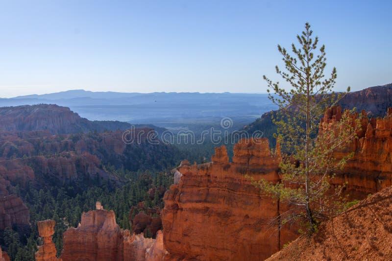 Έμπνευση τοπίων από το φαράγγι του Bryce, Hoodoos και τους κόκκινους βράχους στοκ φωτογραφίες με δικαίωμα ελεύθερης χρήσης