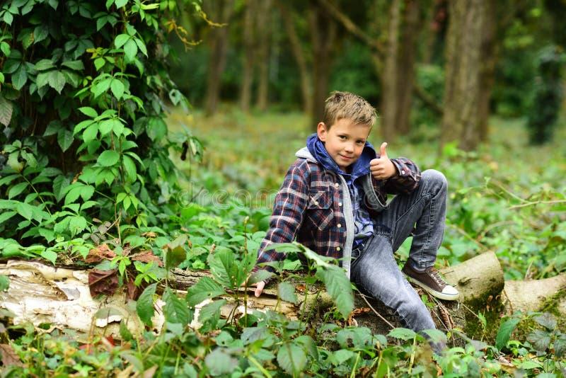 Έναρξη που είναι επιτυχής Το μικρό αγόρι γιορτάζει την επιτυχία Το μικρό αγόρι παρουσιάζει αντίχειρες στα ξύλα Η επιτυχία είναι έ στοκ εικόνες