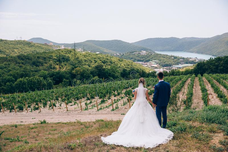 Ένας άνδρας και μια γυναίκα θαυμάζουν την ομορφιά της φύσης, κρατούν τα χέρια στενά και κάνουν τα σχέδια για το μέλλον Γαμήλιος π στοκ φωτογραφία με δικαίωμα ελεύθερης χρήσης