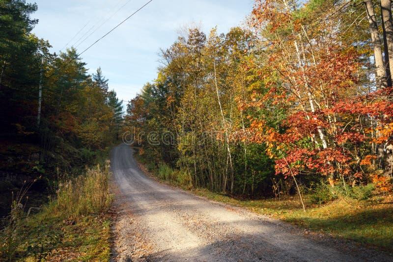 Ένας αγροτικός δρόμος αμμοχάλικου μέσω των δέντρων φθινοπώρου στοκ φωτογραφίες με δικαίωμα ελεύθερης χρήσης