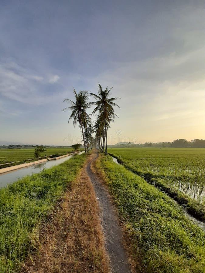 ένας απλός δρόμος που εξωραΐζει το όμορφο τοπίο στη σαφή θέα στοκ εικόνες
