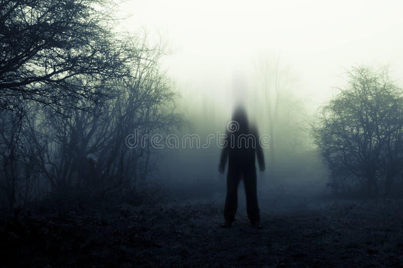 Ένας απόκοσμος, θολωμένος, πνευματικός με κουκούλα αριθμός για τη στάση σε μια πορεία μια ομιχλώδη χειμερινή ημέρα Με χαμηλωμένο, στοκ φωτογραφίες