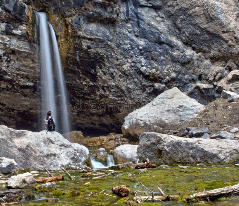 Ένας απόμερος αριθμός στηρίζεται δίπλα να ρίξει στο βράχο στο φαράγγι Glenwood, Κολοράντο στοκ φωτογραφία με δικαίωμα ελεύθερης χρήσης